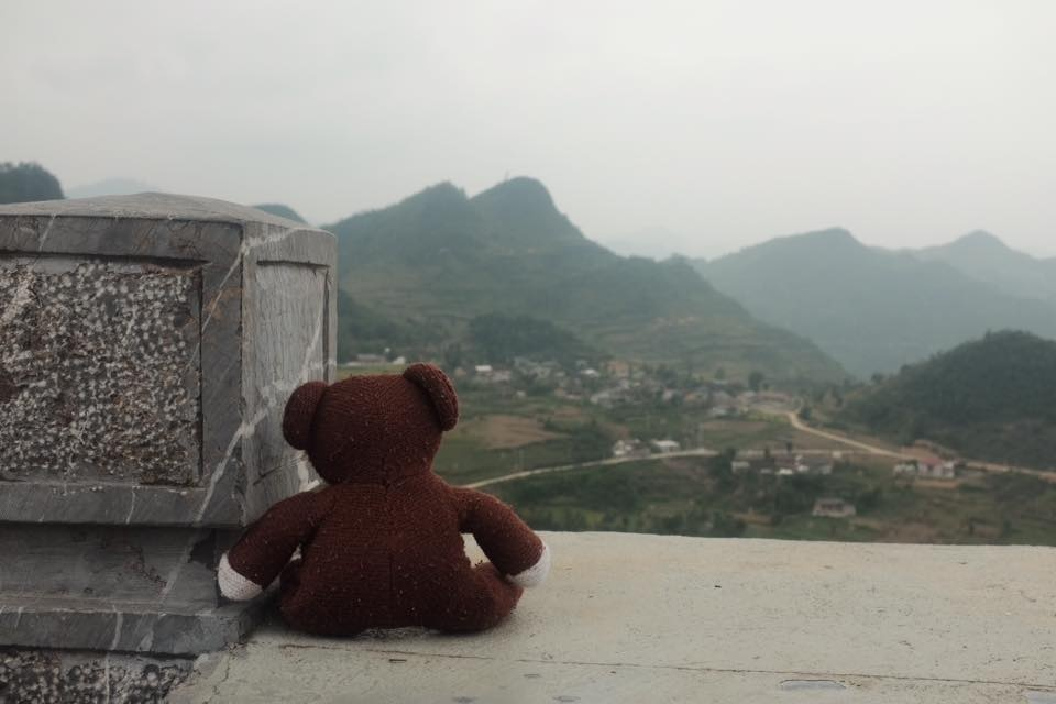Chang trai dua gau Teddy di xuyen Viet hinh anh 2