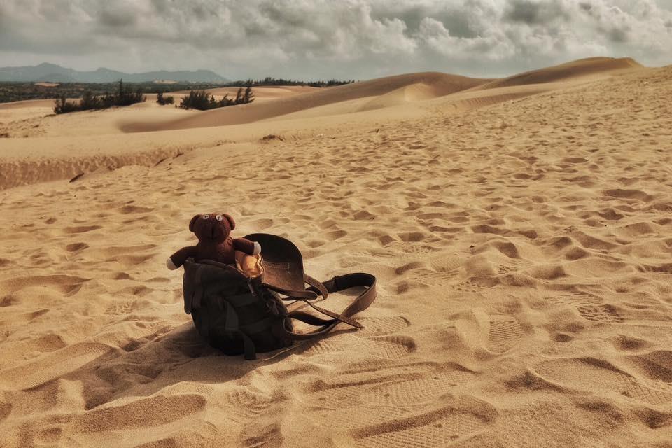 Chang trai dua gau Teddy di xuyen Viet hinh anh 14