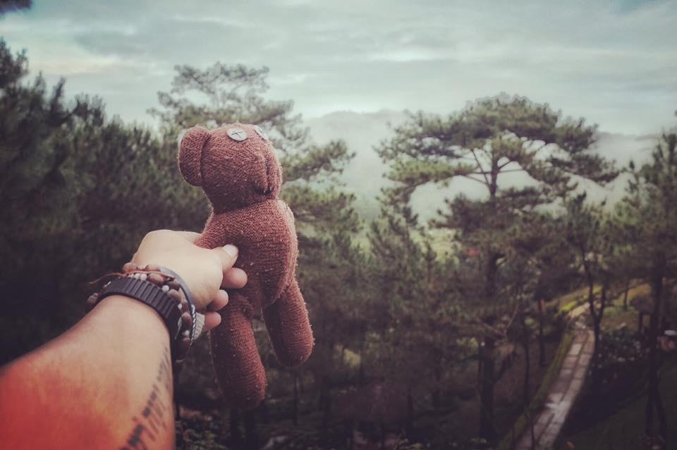 Chang trai dua gau Teddy di xuyen Viet hinh anh 15