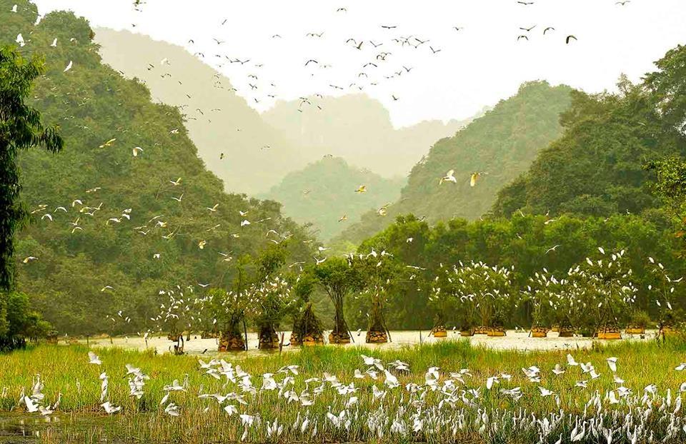 Du lich Ninh Binh anh 15