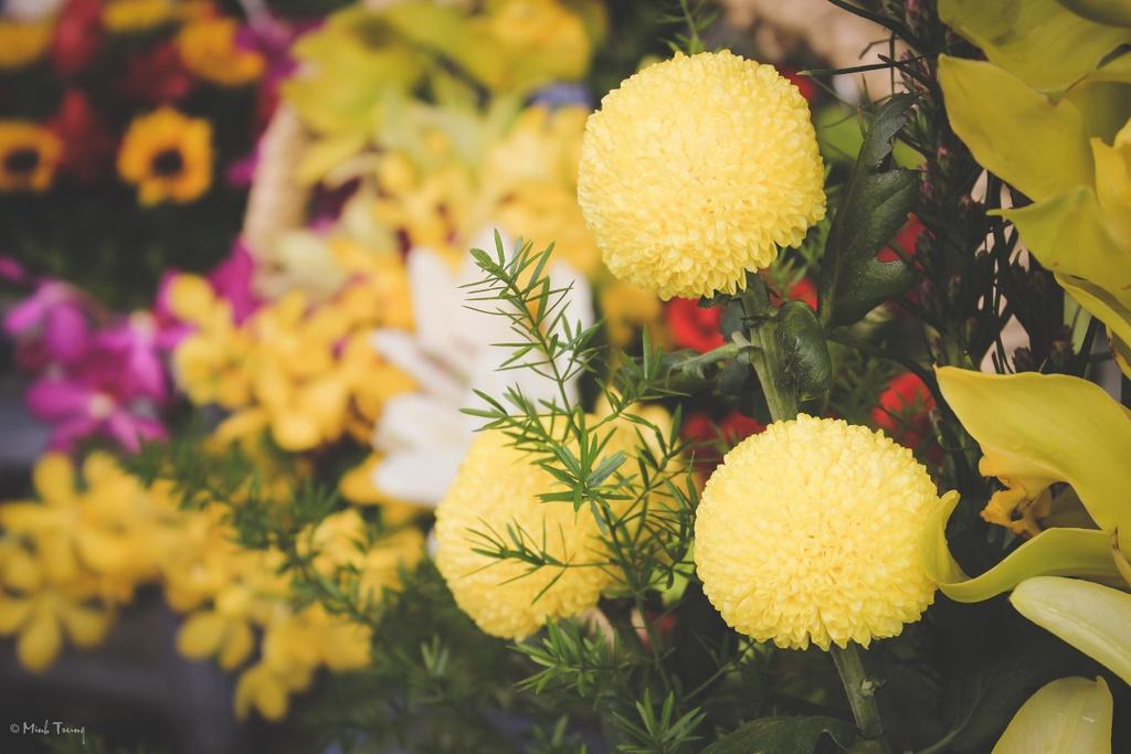 Sac mau binh di tai cho hoa lon nhat Sai Gon hinh anh 19