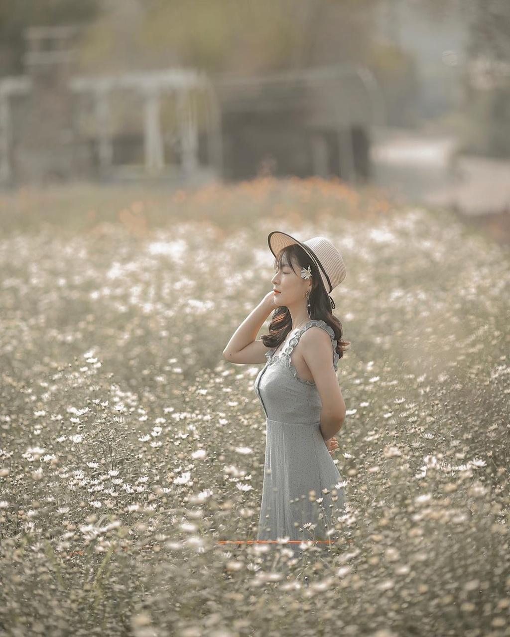 Gioi tre Ha Noi ru nhau check-in voi cuc hoa mi hinh anh 9