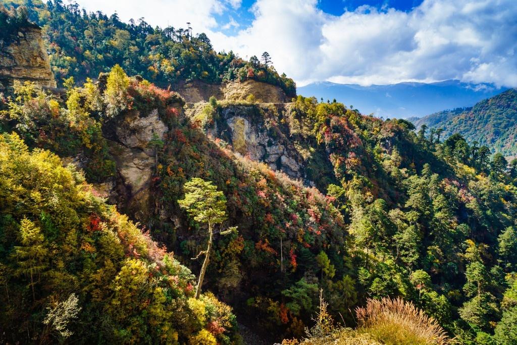 Kinh nghiem du lich Bhutan - vuong quoc hanh phuc nhat the gioi hinh anh 8 Anh_8_Nguyen_Thanh_Tung_.jpg