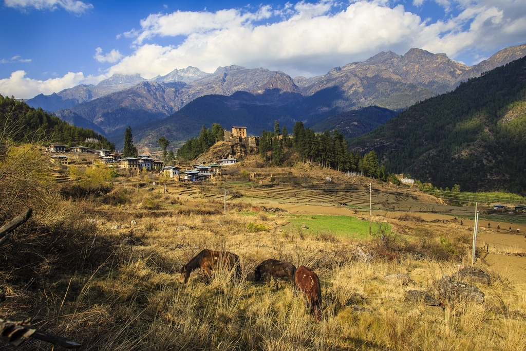 Kinh nghiem du lich Bhutan - vuong quoc hanh phuc nhat the gioi hinh anh 10 Anh_9_Nguyen_Thanh_Hai_1_.jpg