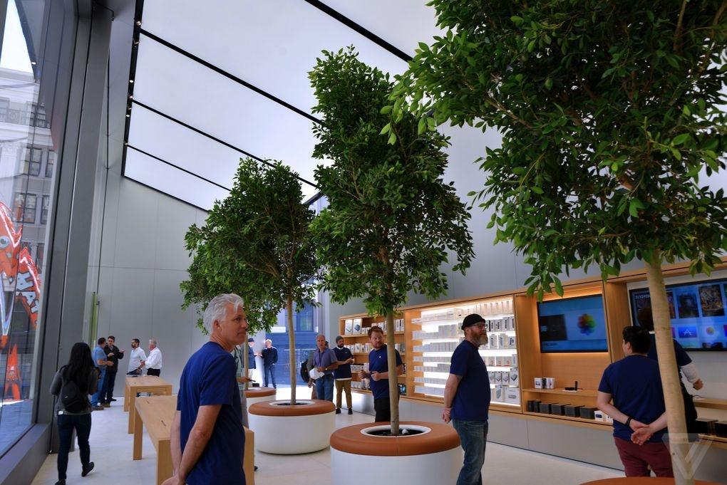 Ben trong Apple Store kieu moi hinh anh 7