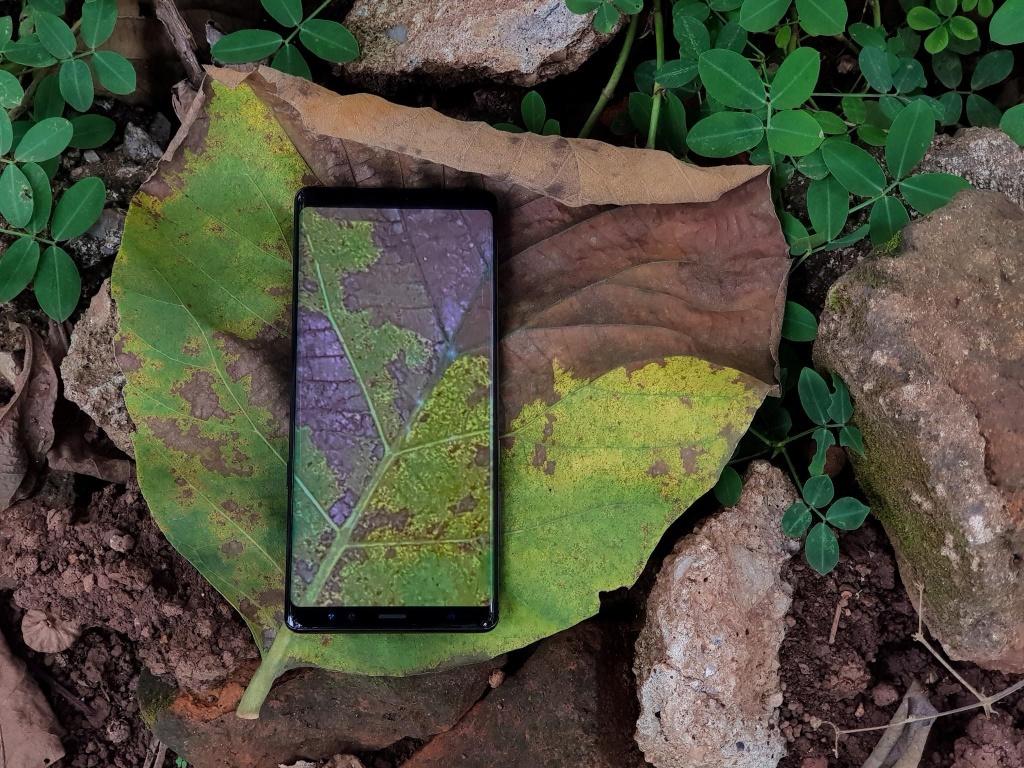 Bo anh vo cuc chup bang Samsung Galaxy Note 8 hinh anh 3