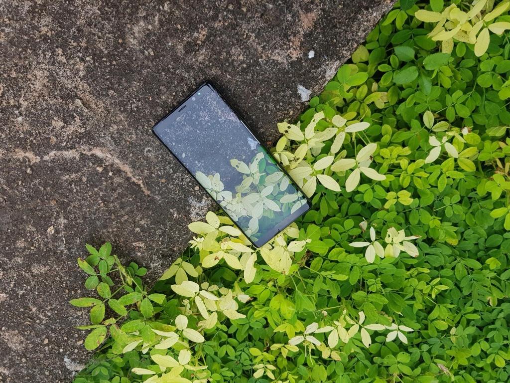 Bo anh vo cuc chup bang Samsung Galaxy Note 8 hinh anh 5