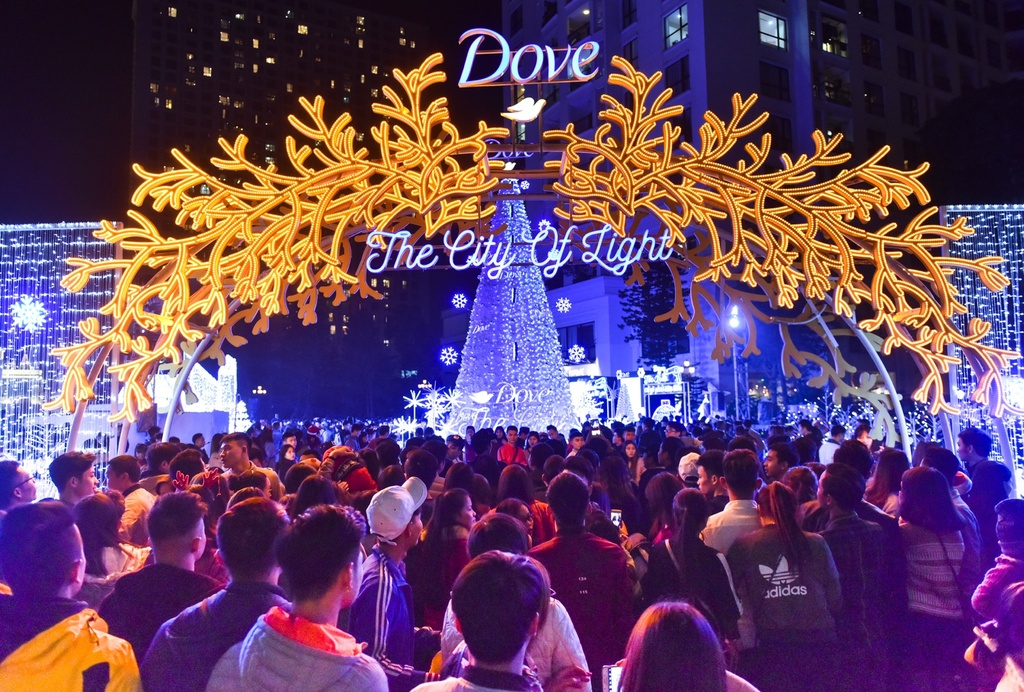 Dove City of lights anh 12
