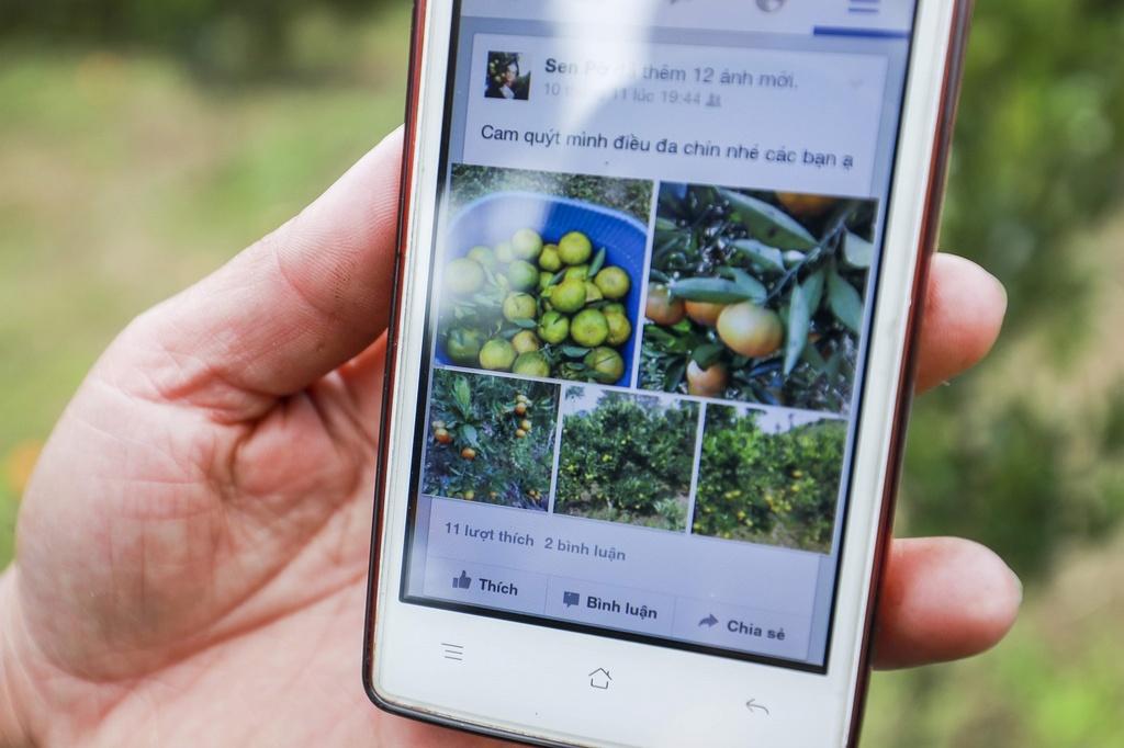 Nong dan Muong Khuong ban quyt bang Facebook, Zalo hinh anh 6