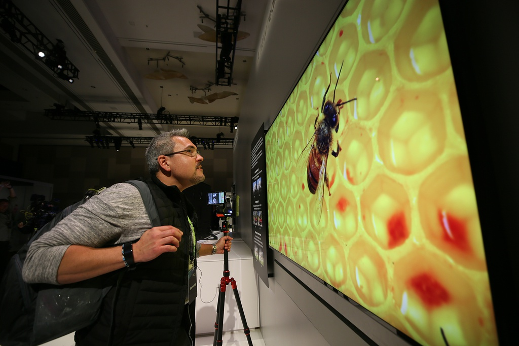 Samsung ra mat TV 8K 98 inch lon nhat the gioi, tich hop AI hinh anh 2