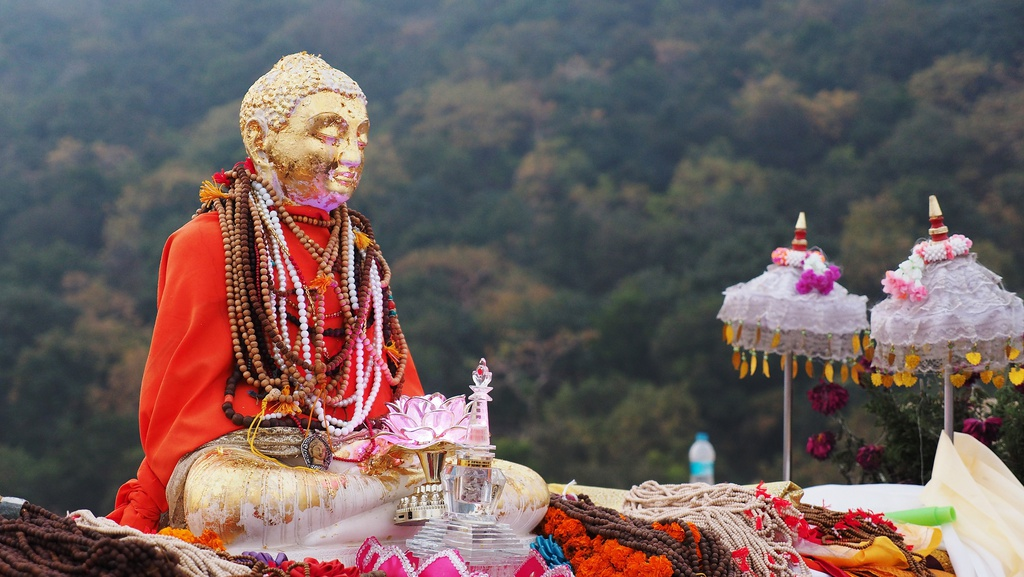Theo chan Phat tu Viet hanh huong den dat thieng An Do - Nepal hinh anh 9