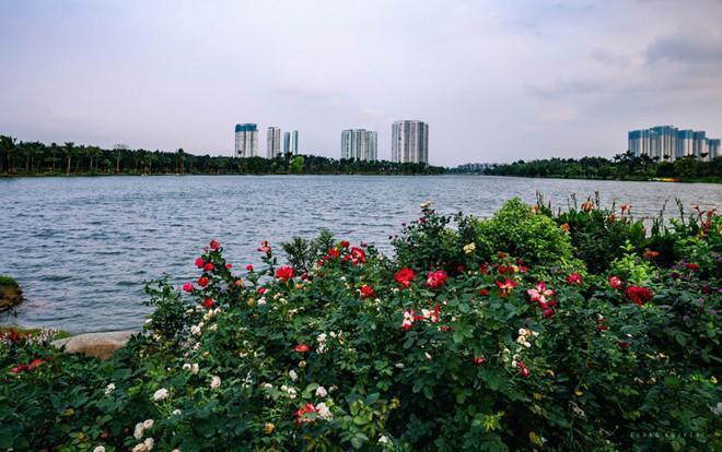 Be boi lung chung troi noi toa thap doi 41 tang tai Ecopark hinh anh 14 14.jpg