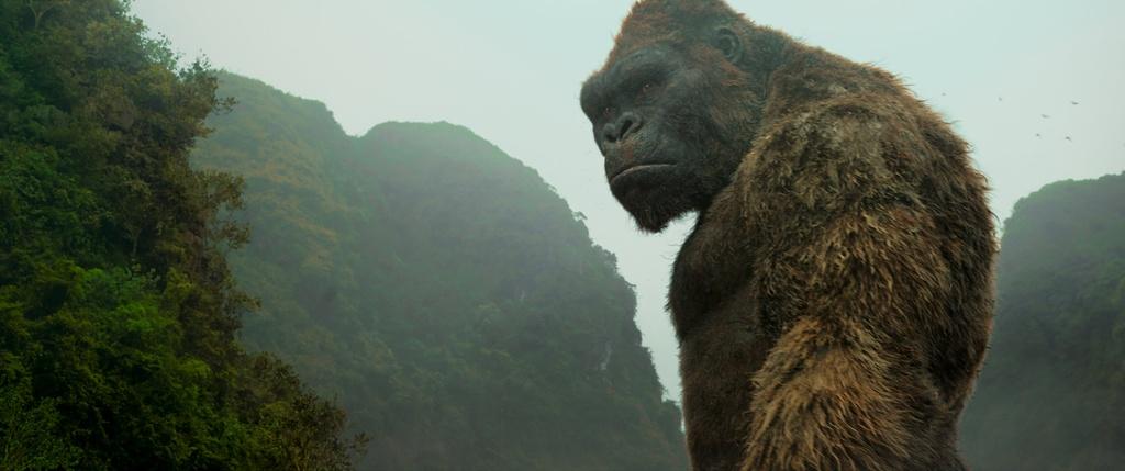 tao hinh King Kong anh 6