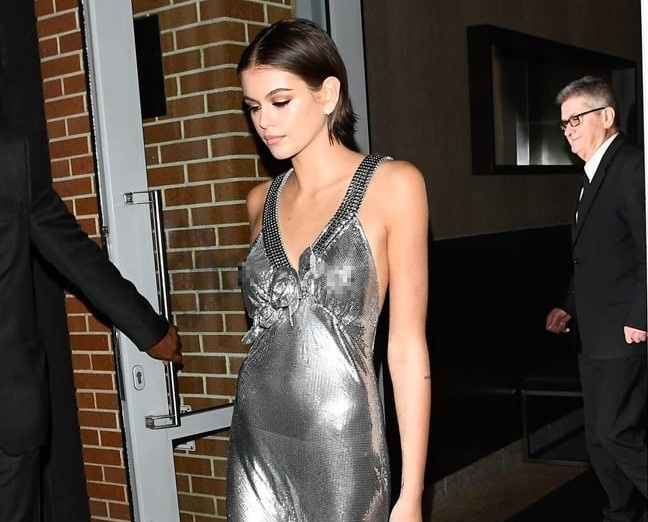 Kendall Jenner mac bo hong sexy, Hailey Bieber dien ca cay den ca tinh hinh anh 4 8_2_.jpg