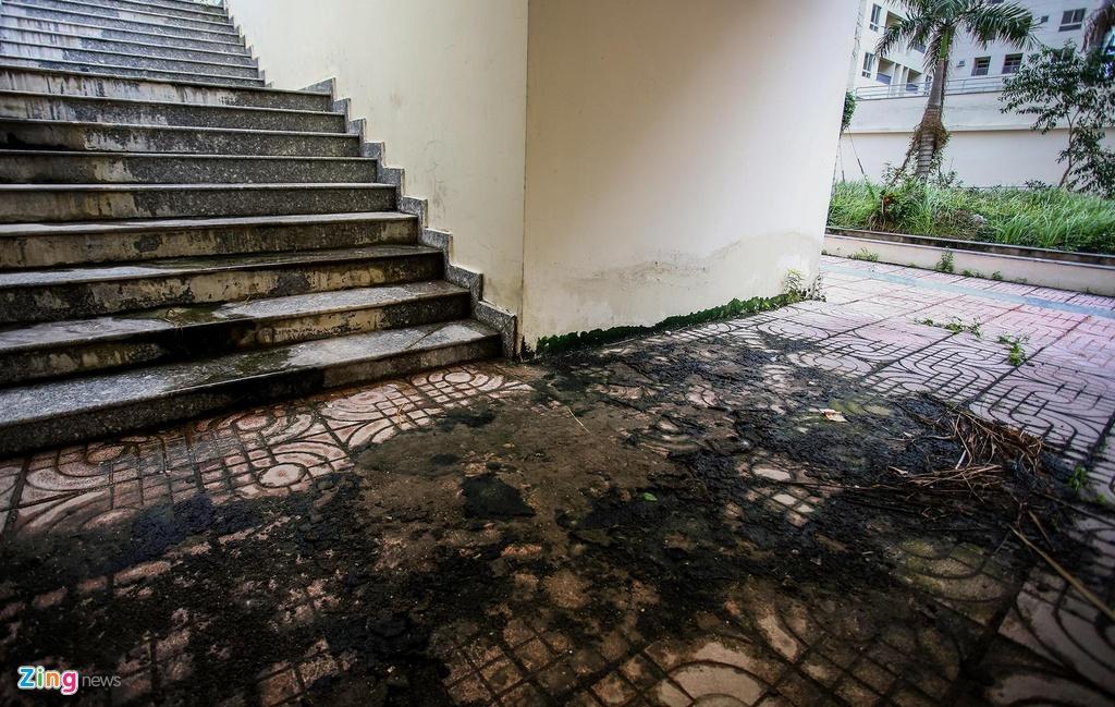 Sàn gạch bị xuống cấp, bong tróc, rêu mốc xuất hiện ở hầu hết diện tích mặt sàn.