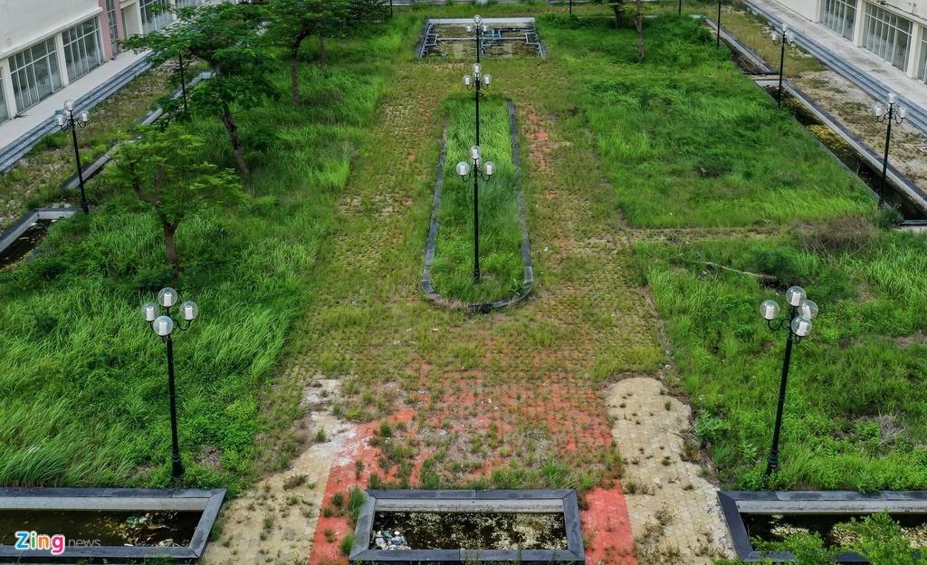Khu vực công viên, đường dạo bộ cũng trong tình cảnh bị cỏ dại mọc.