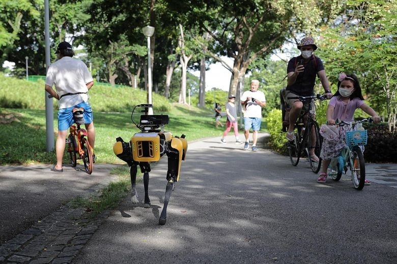 Cho robot, xe dieu khien tu xa chong dich o Singapore hinh anh 1 rfdcds.jpg