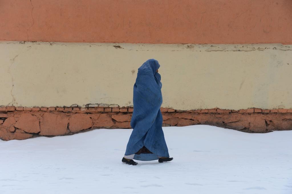 Afghanistan: Mua dong chet choc, 100 nguoi chet vi lo tuyet hinh anh 8