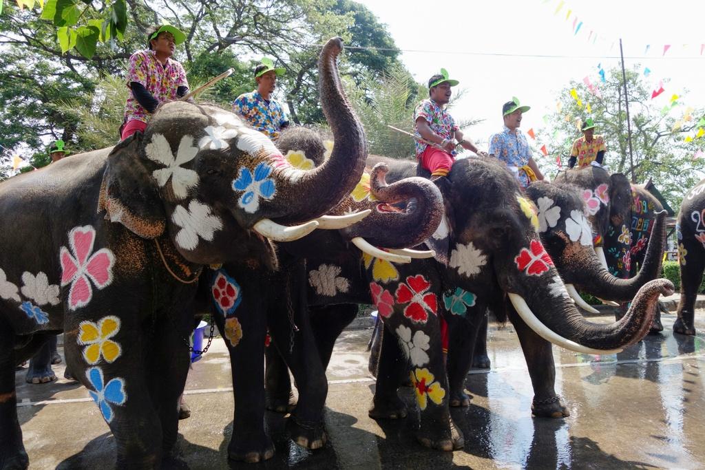 Thai Lan ron rang truoc Songkran dau tien sau quoc tang hinh anh 8