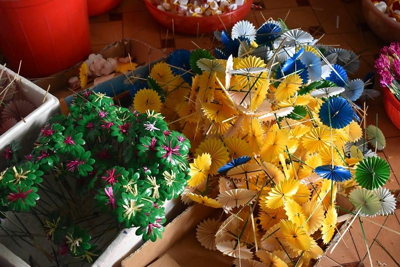 hoa giay Thanh Tien anh 15