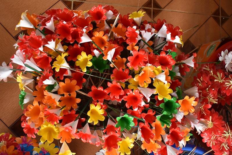 hoa giay Thanh Tien anh 4