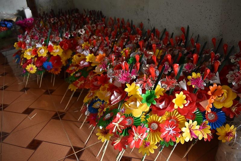 hoa giay Thanh Tien anh 16