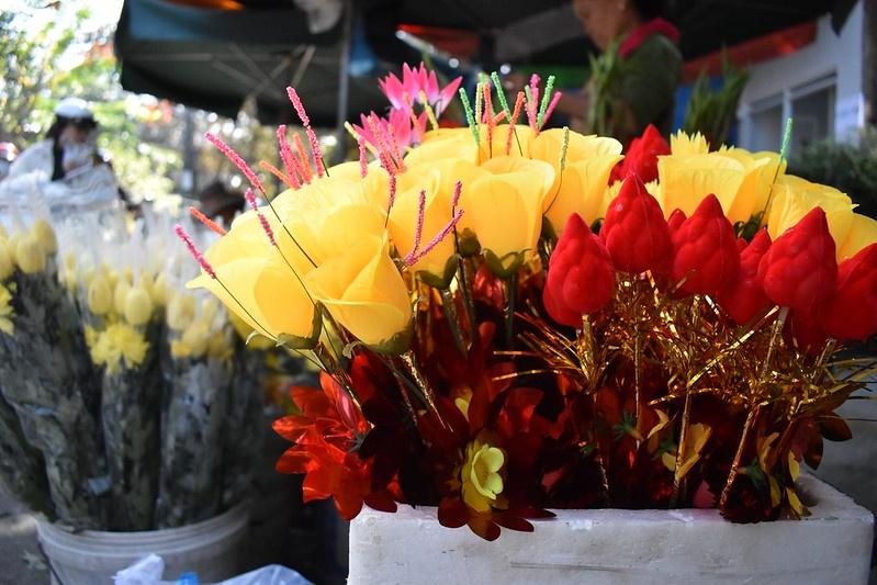 hoa giay Thanh Tien anh 17