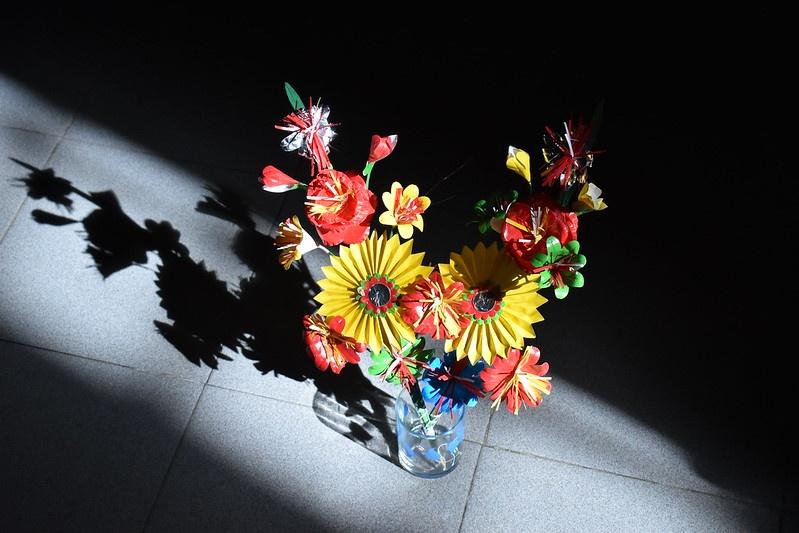 hoa giay Thanh Tien anh 8