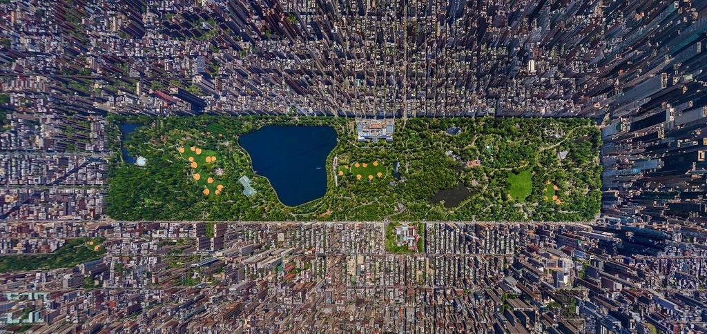 Central Park - Mang xanh khong lo giua New York hinh anh 2