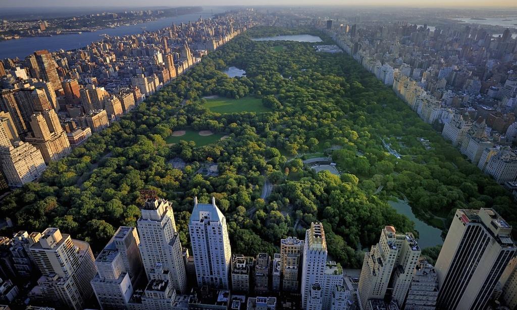 Central Park - Mang xanh khong lo giua New York hinh anh 1