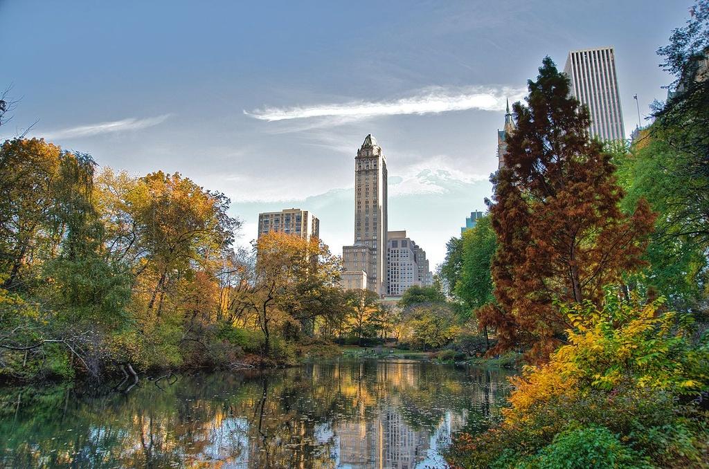 Central Park - Mang xanh khong lo giua New York hinh anh 3