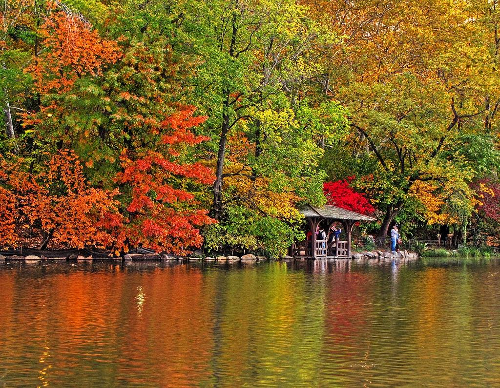 Central Park - Mang xanh khong lo giua New York hinh anh 4