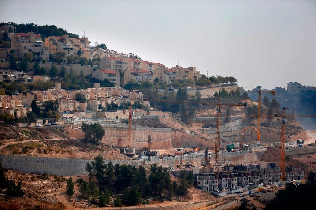 Dai su Palestine: Khong ai ung ho quyet dinh sai lam cua Trump hinh anh 6