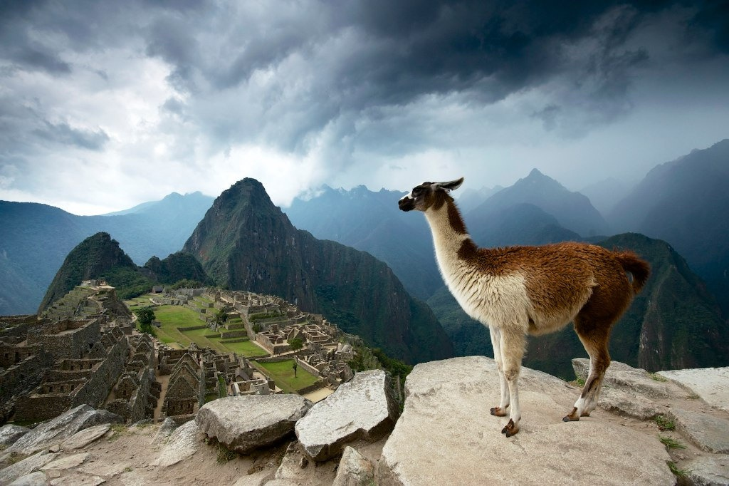 Vi sao nguoi Inca xay thanh Machu Picchu bang da khong dung vua? hinh anh 10