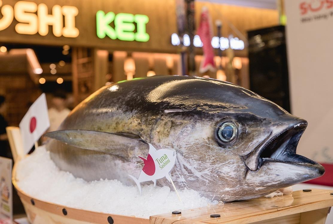 Thuong thuc sashimi che bien tu ca ngu dai duong nang 100 kg hinh anh 1
