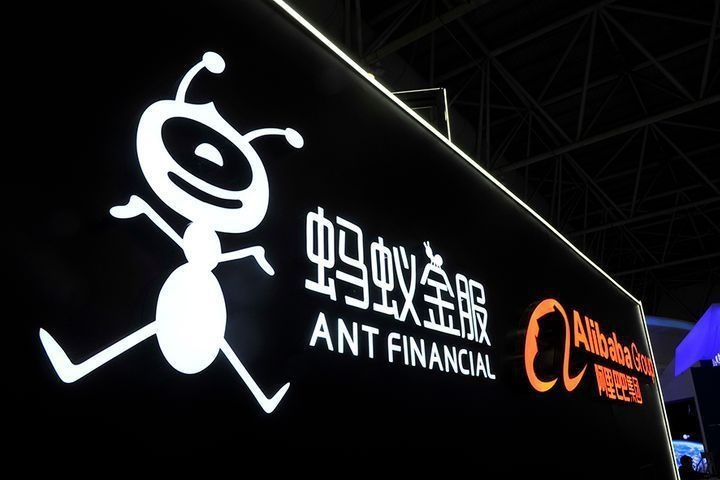 Ant hoan IPO anh 2