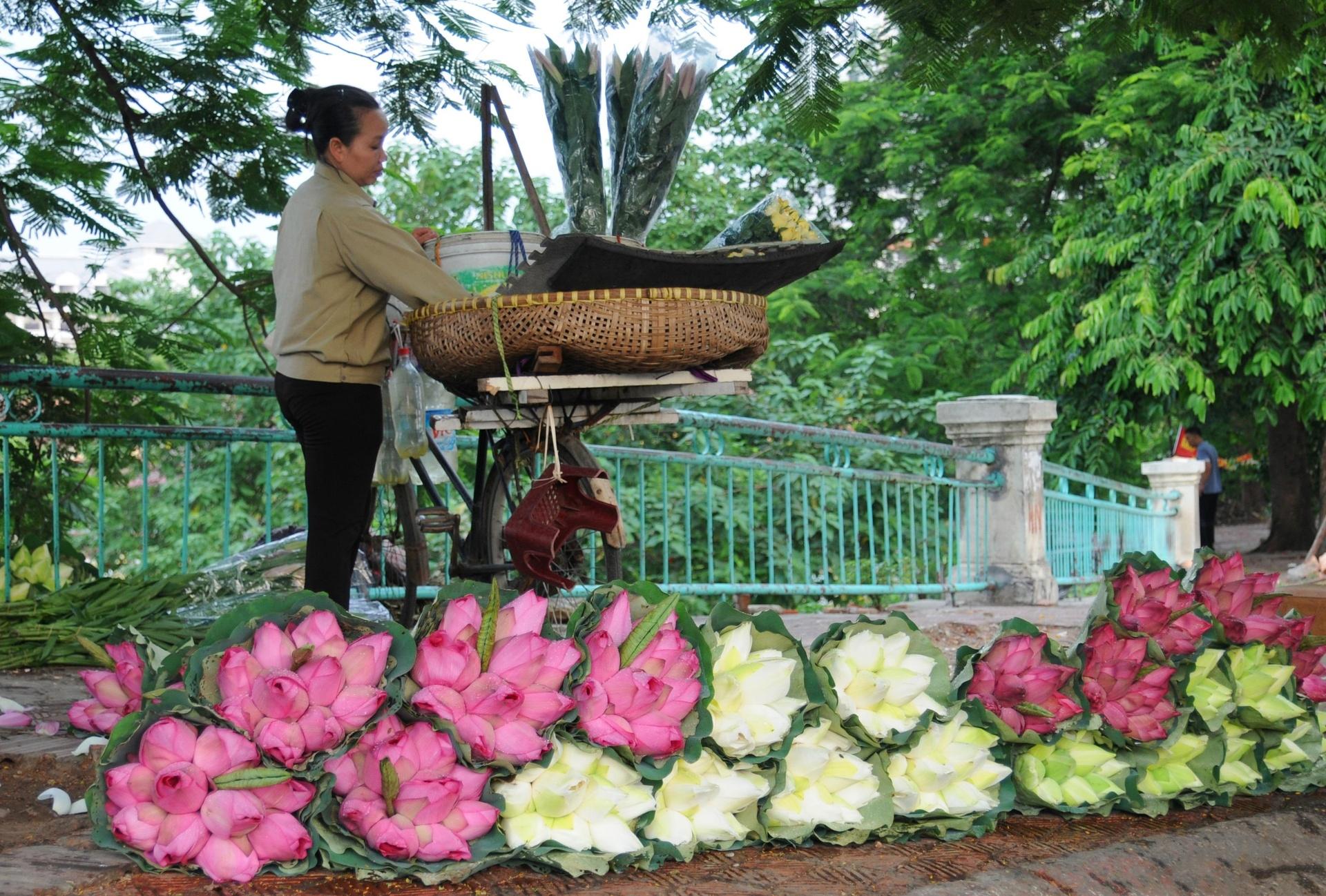 Ha Noi ruc ro trong nhung sac hoa mua he hinh anh 38