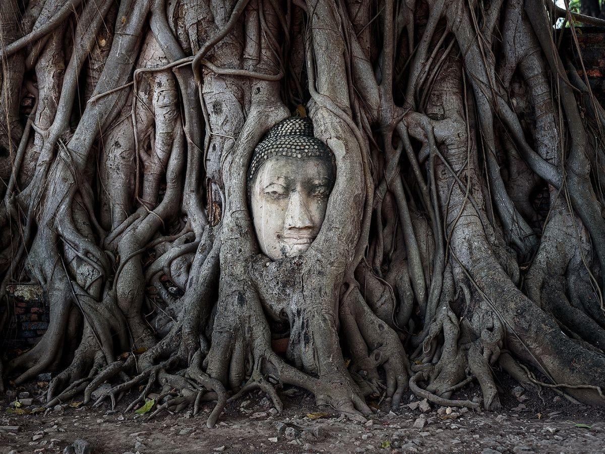Ayutthaya anh 5