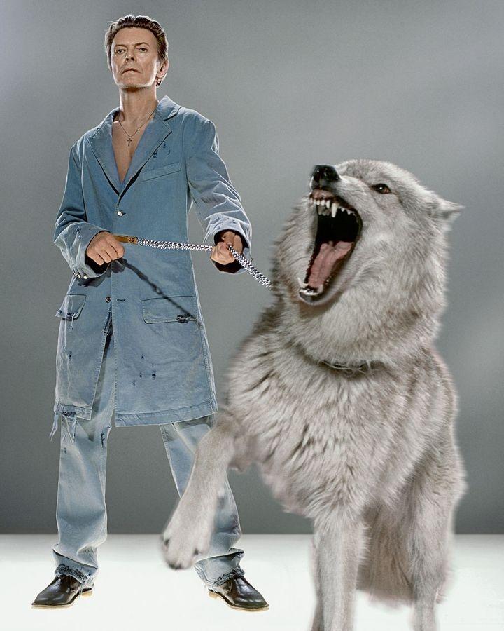 Bieu tuong David Bowie anh 6