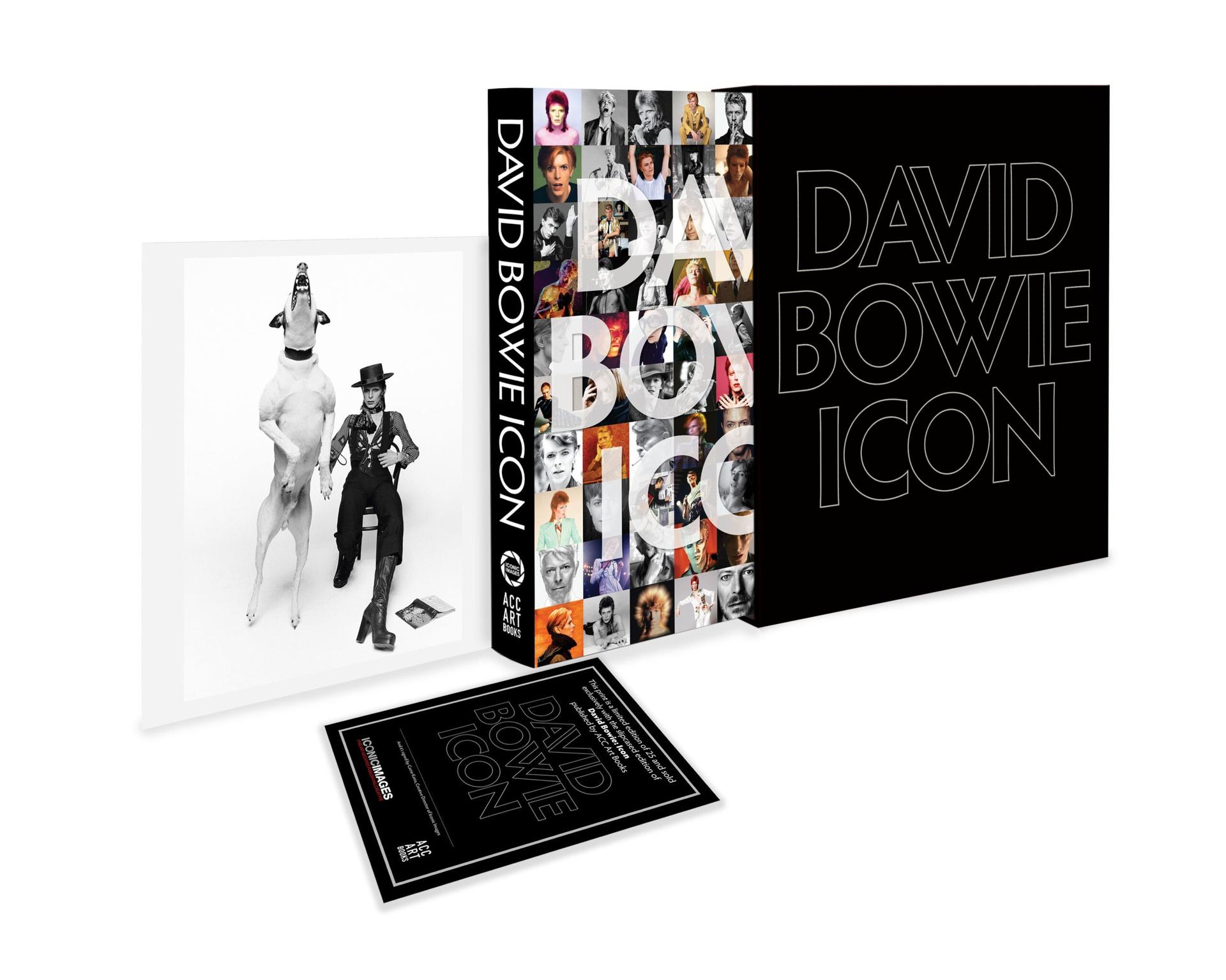 Bieu tuong David Bowie anh 4