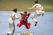 Wushu se mang lai HCV dau tien cho Viet Nam tai SEA Games 27 hinh anh