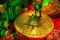 So Bitcoin 'ngu quen' gia 4 USD da tro thanh 3,1 trieu USD sau 11 nam hinh anh