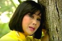 Cuoc song cua Tai Linh, Kim Tu Long va dan sao 'Mua bui' gio ra sao? hinh anh