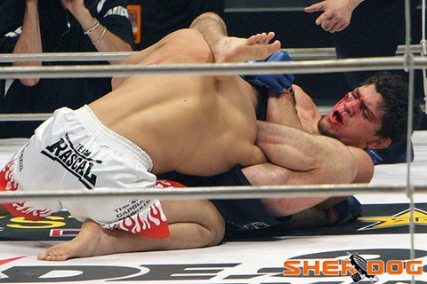 10 tran dau hap dan nhat lich su MMA hinh anh 10