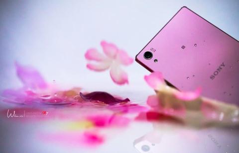 Xperia Z5 Premium mau hoa anh dao sap ve Viet Nam hinh anh