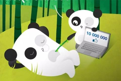 Bored Panda thanh the luc tren Facebook nhu the nao? hinh anh