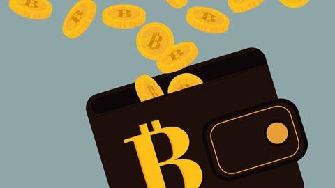 Hang ty USD bitcoin da roi vao coi hu vo hinh anh