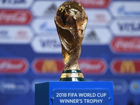 FIFA chinh thuc tang so doi du World Cup hinh anh