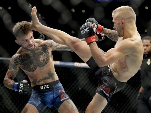 Vi sao MMA la vua cua cac mon doi khang? hinh anh 2