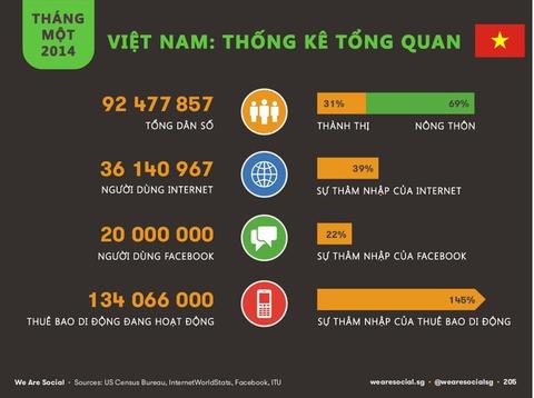 Viet Nam Digital Marketing 2014 hinh anh